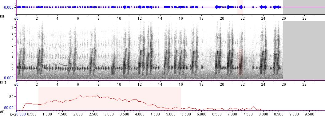 Sonogram of recording #AV 8587