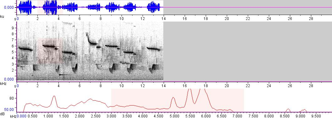 Sonogram of recording #AV 8665