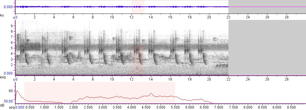 Sonogram of recording #AV 8959
