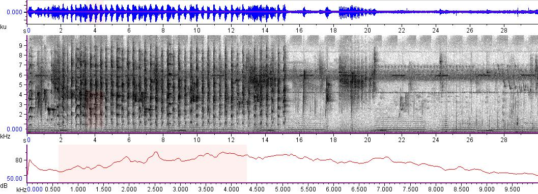 Sonogram of recording #AV 9022