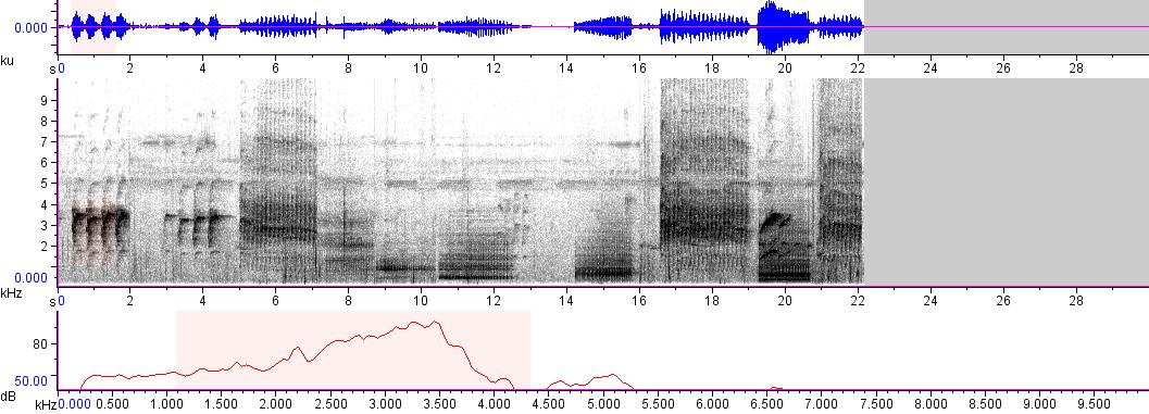 Sonogram of recording #AV 9189