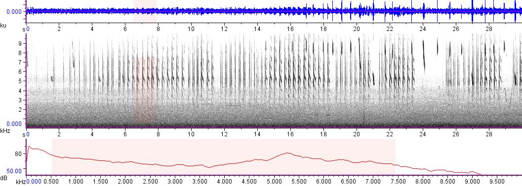 Sonogram of recording #AV 9266