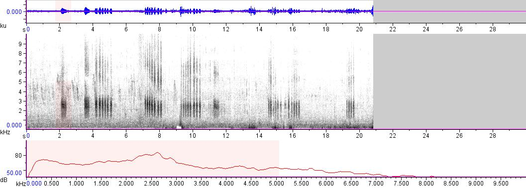 Sonogram of recording #AV 9268