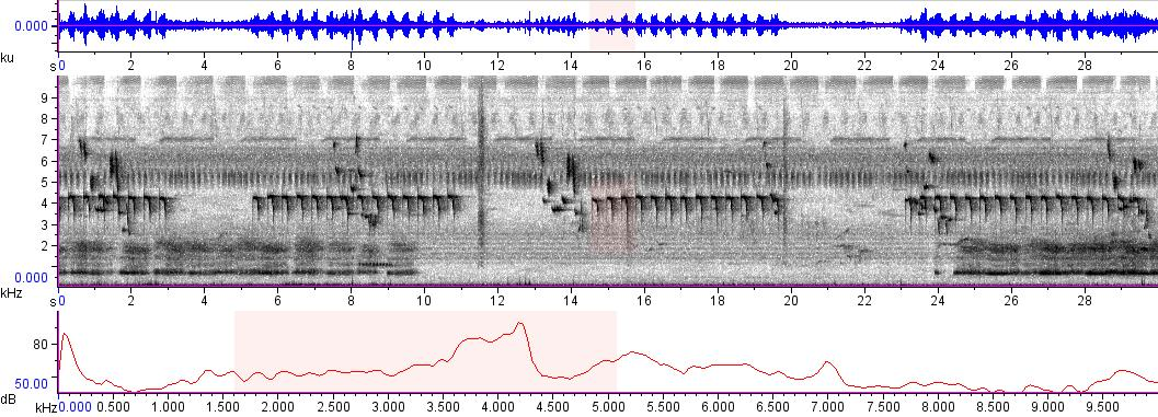 Sonogram of recording #AV 9607