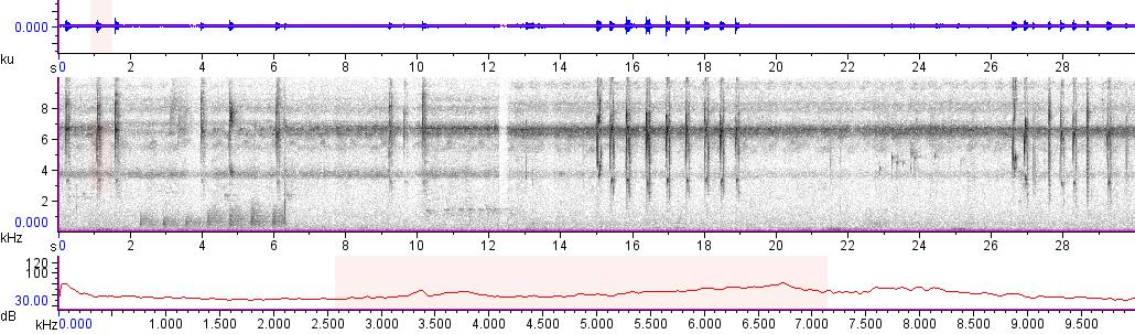 Sonogram of recording #AV 10058