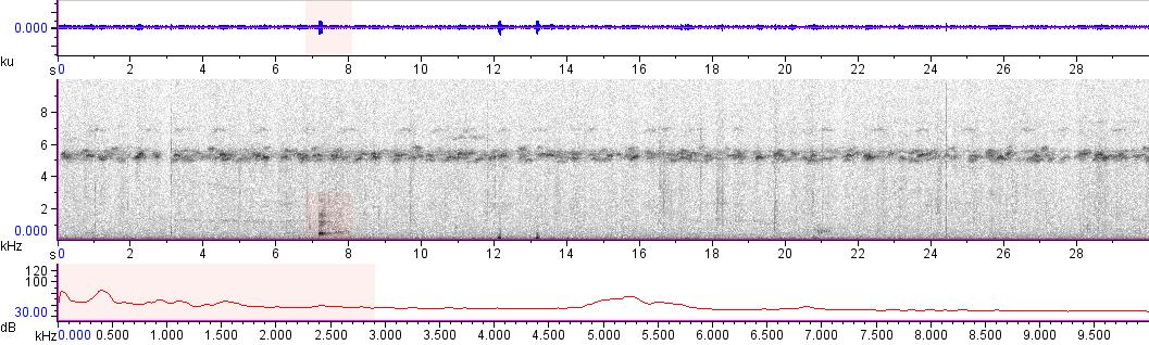 Sonogram of recording #AV 10092
