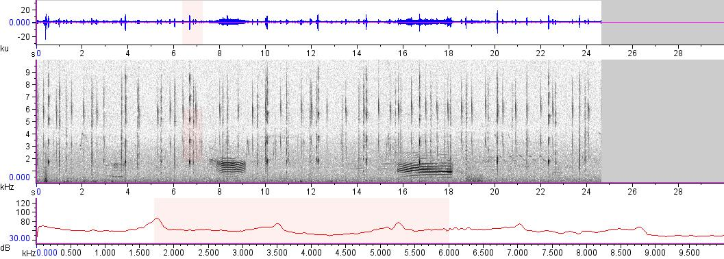 Sonogram of recording #AV 10268