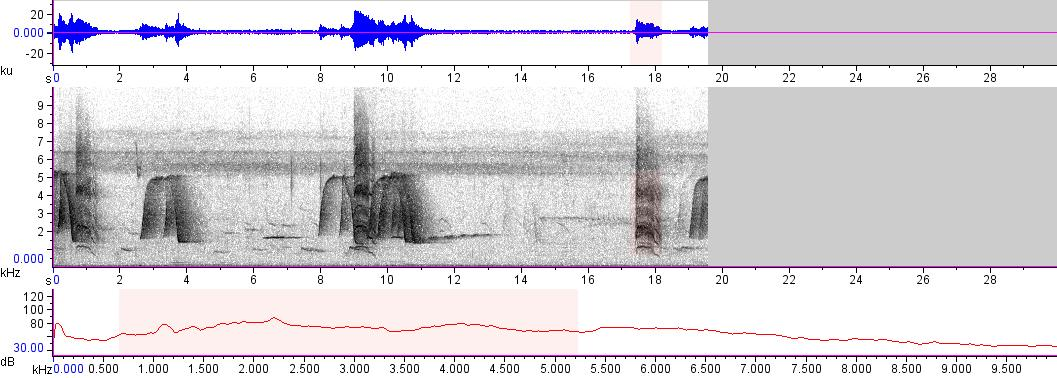 Sonogram of recording #AV 10282