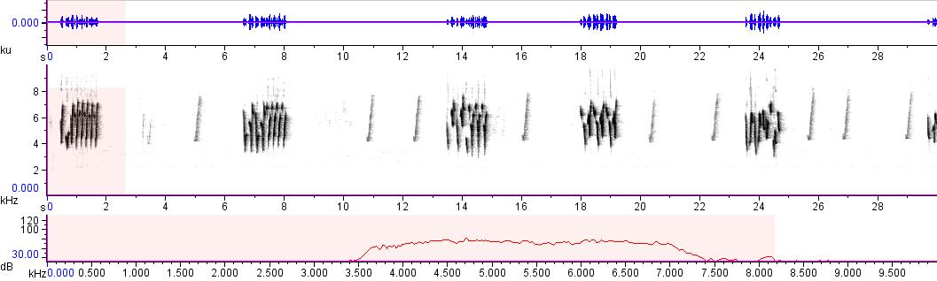 Sonogram of recording #AV 10419
