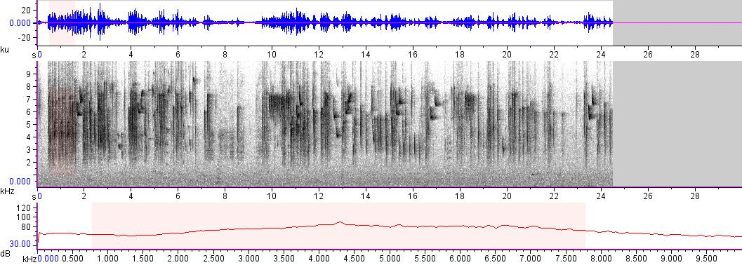 Sonogram of recording #AV 10506