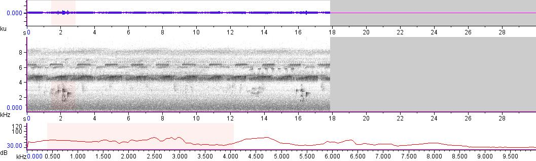 Sonogram of recording #AV 10541