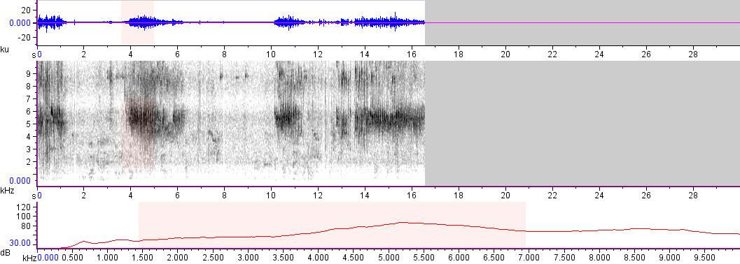 Sonogram of recording #AV 10639