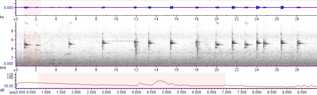 Sonogram of recording #AV 10732