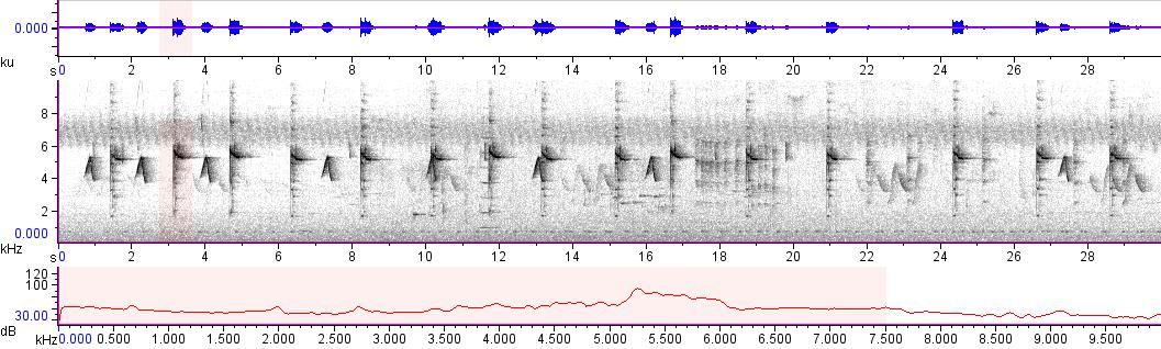 Sonogram of recording #AV 10733