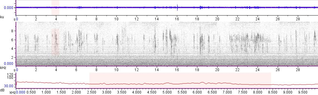 Sonogram of recording #AV 10744