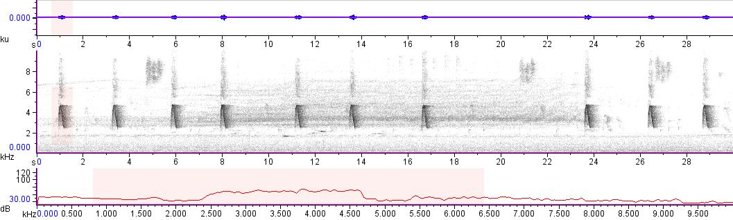 Sonogram of recording #AV 10770