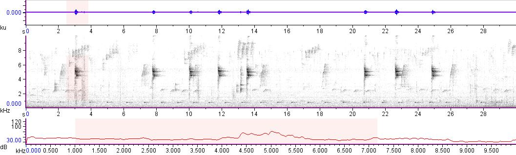Sonogram of recording #AV 10834