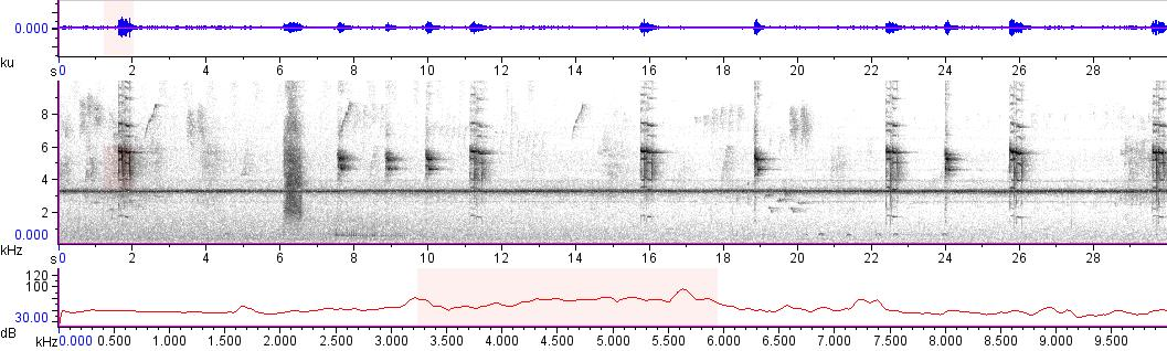 Sonogram of recording #AV 10835