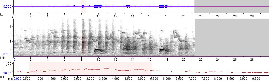 Sonogram of recording #AV 11023