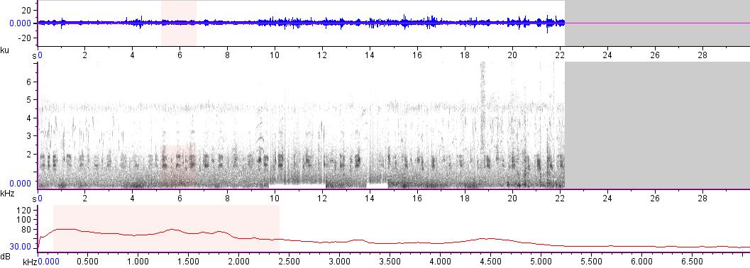 Sonogram of recording #AV 11842