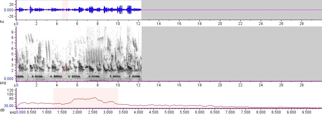 Sonogram of recording #AV 12399