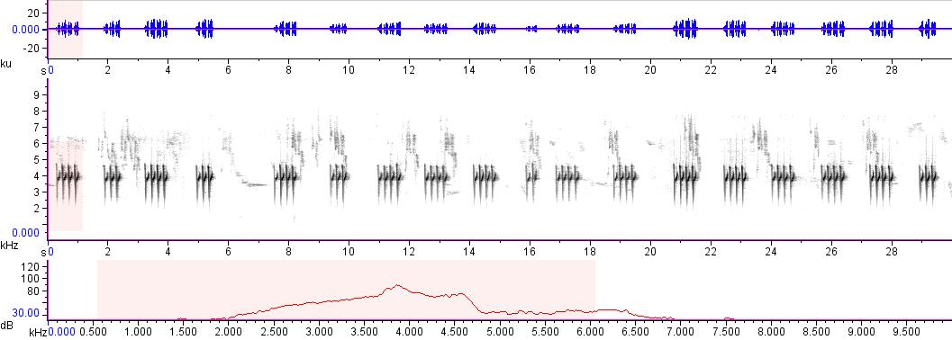 Sonogram of recording #AV 12759