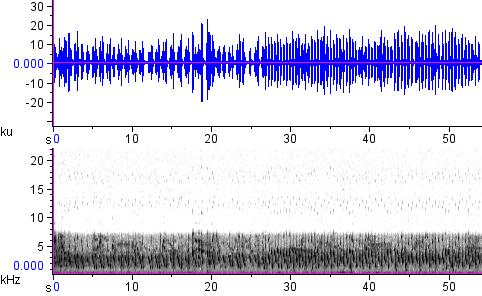 Sonogram of recording #AV 12847