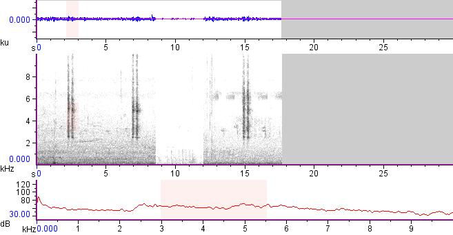 Sonogram of recording #AV 13076