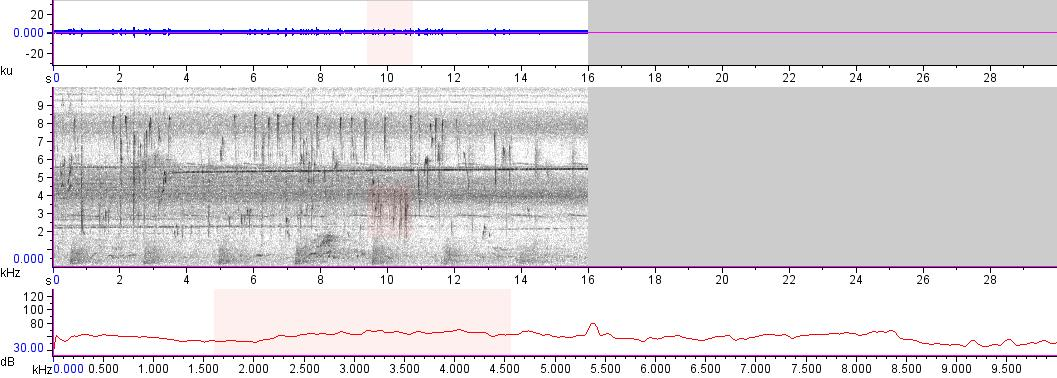 Sonogram of recording #AV 13670