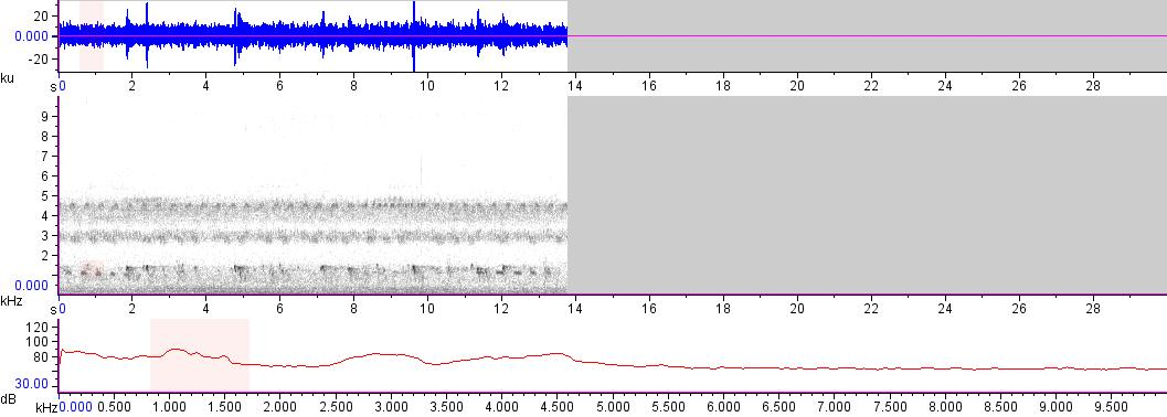 Sonogram of recording #AV 13859