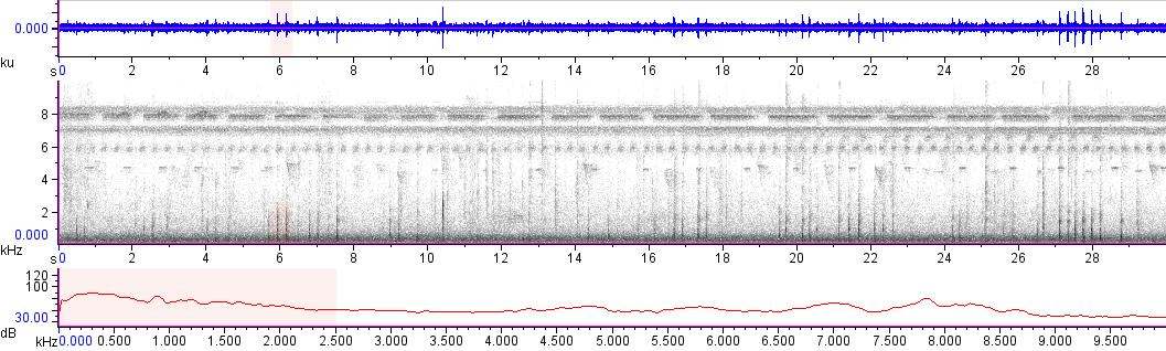 Sonogram of recording #AV 14047