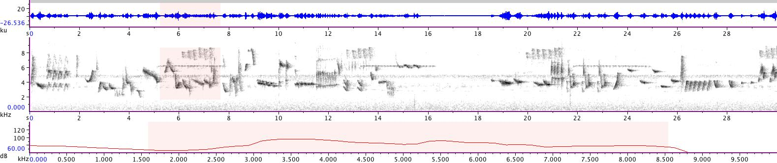 Sonogram of recording #AV 14241