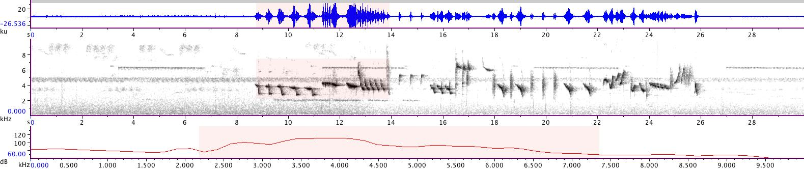 Sonogram of recording #AV 14244