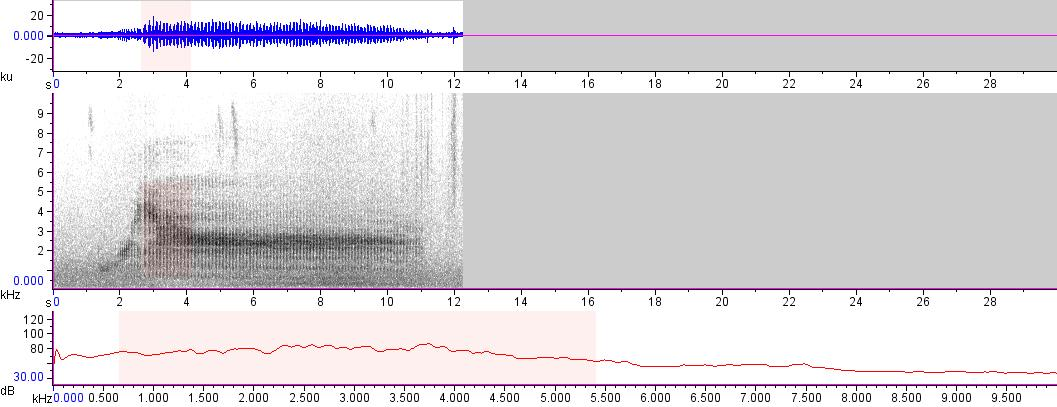 Sonogram of recording #AV 14249