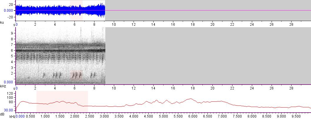 Sonogram of recording #AV 14258