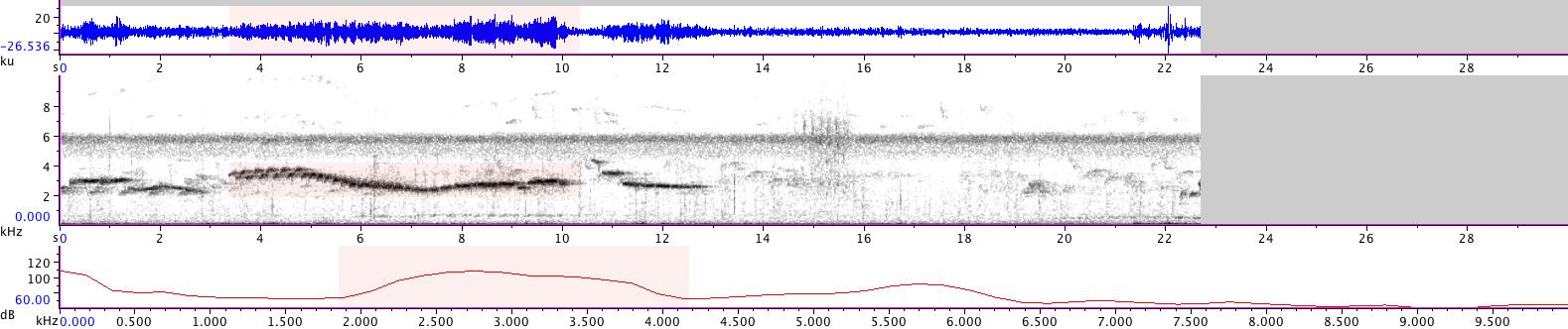 Sonogram of recording #AV 14282