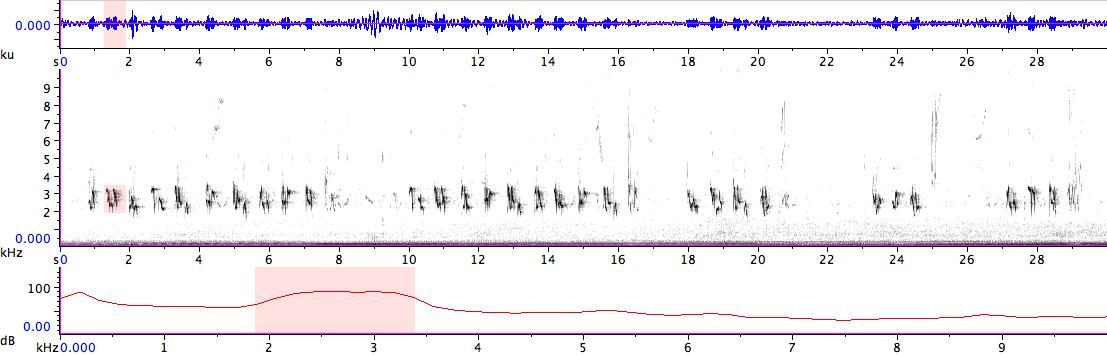Sonogram of recording #AV 14334