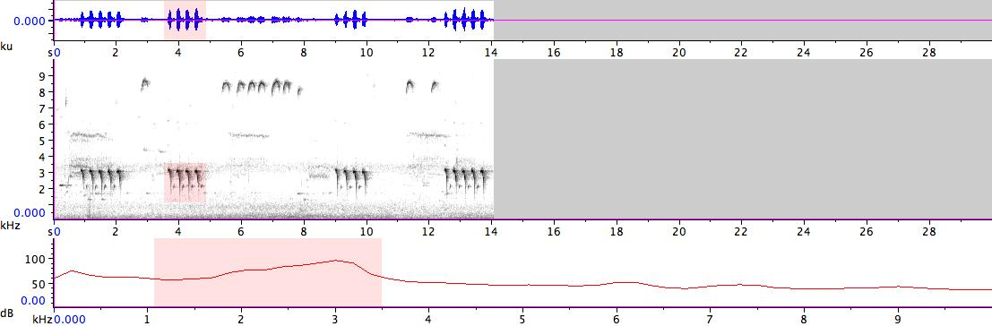 Sonogram of recording #AV 14341
