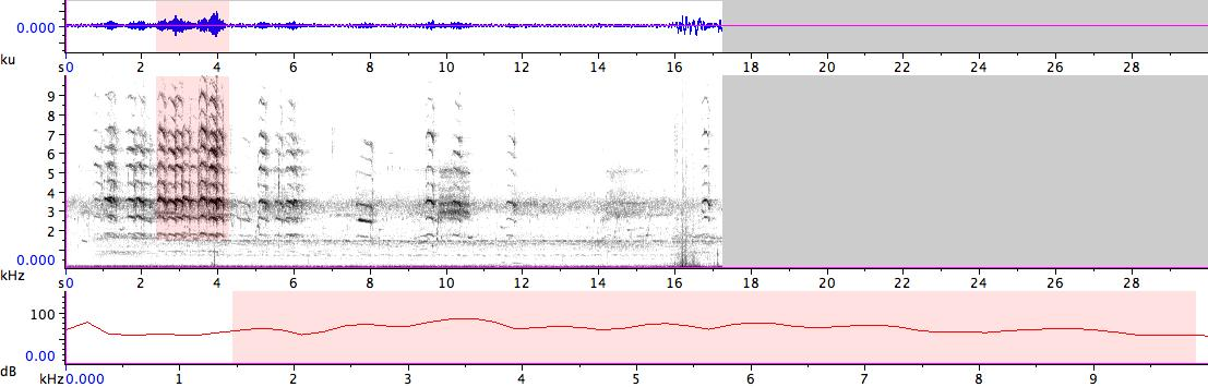 Sonogram of recording #AV 14353