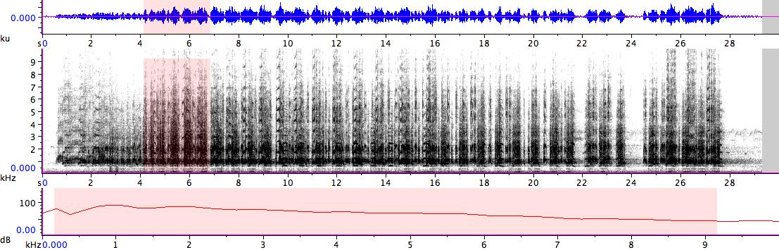 Sonogram of recording #AV 14358