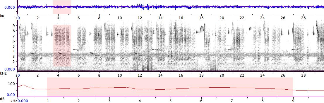 Sonogram of recording #AV 14359