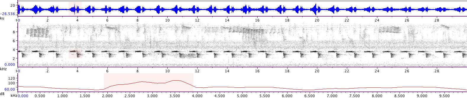 Sonogram of recording #AV 14370