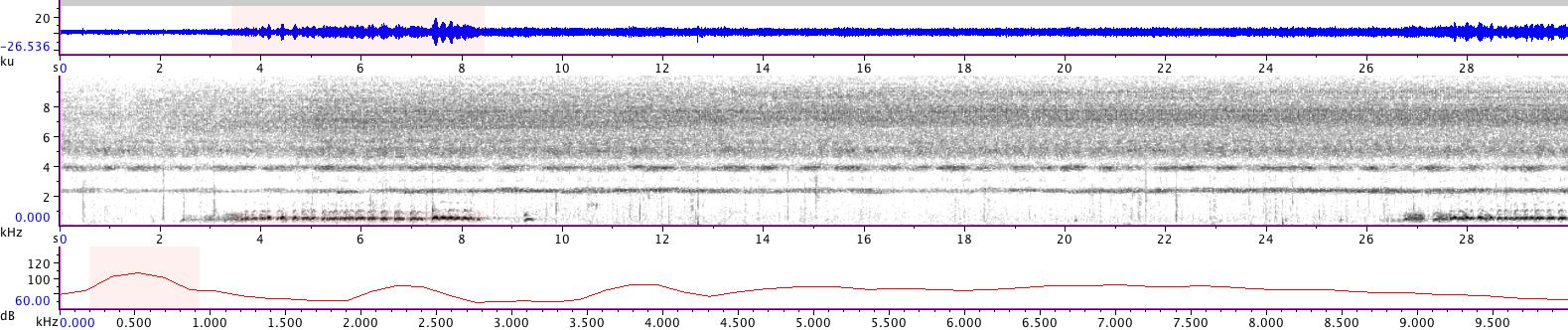 Sonogram of recording #AV 14379