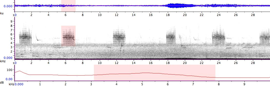 Sonogram of recording #AV 14433