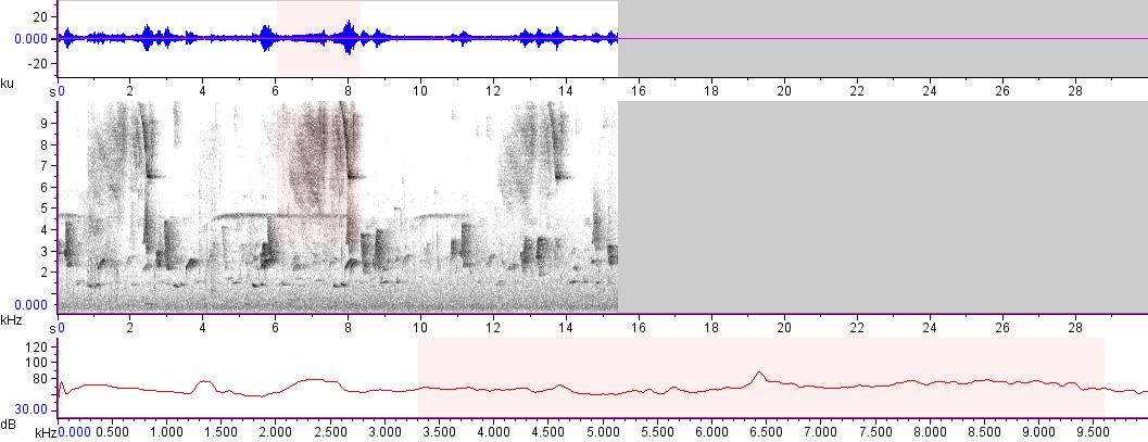 Sonogram of recording #AV 14497