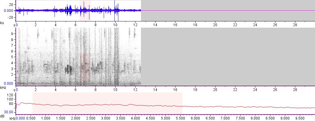 Sonogram of recording #AV 14501
