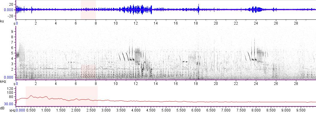 Sonogram of recording #AV 14744