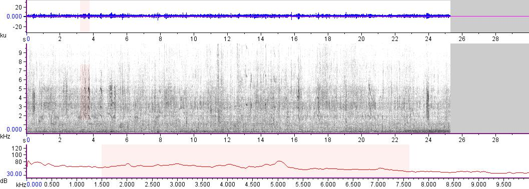 Sonogram of recording #AV 14755