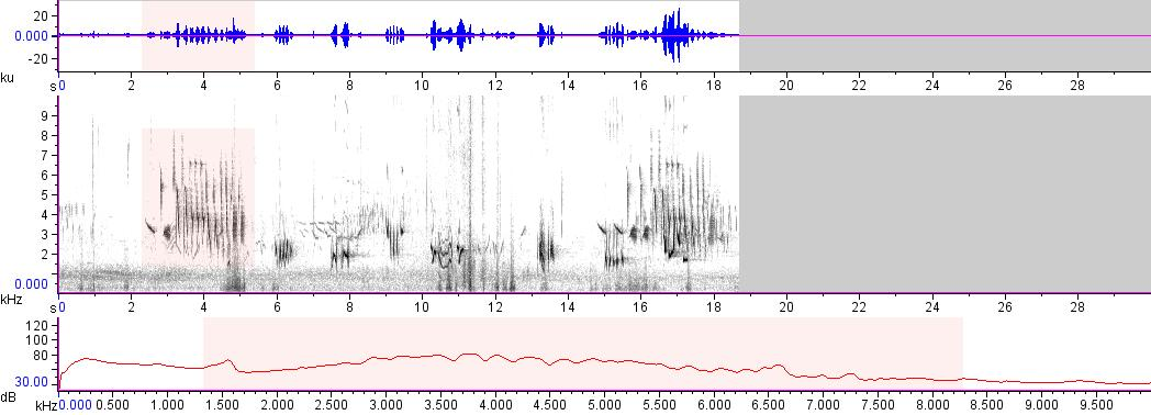 Sonogram of recording #AV 14866