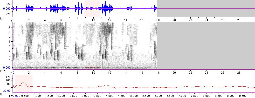Sonogram of recording #AV 14985